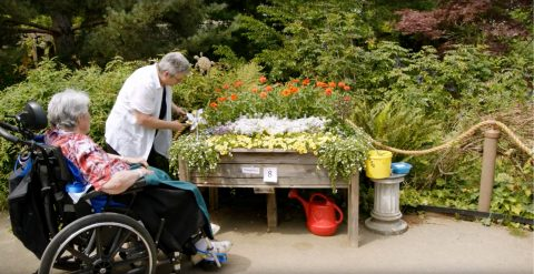 Ageless Gardens Screening Event